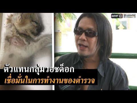 คนรักแมว ให้กำลังใจตร. ดำเนินคดีดีเจสาว | ข่าวช่องวัน | one31
