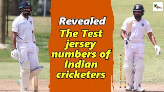 Watch: This Indian cricketer will have a special jersey no. for World Test Championship