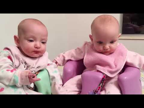 Awesome Twin Babies Playing Together   Twin Babies Video
