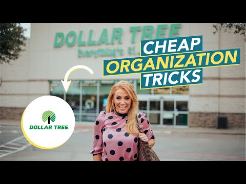 25 Creative Ways to Declutter Your Entire Life  Dollar Store Organization