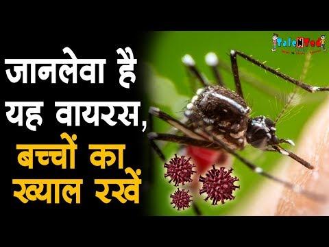 West Nile Virus in India | जान लेने वाला वायरस आ रहा है आपके घर | Talented India News