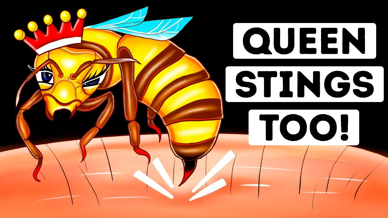 Are Queen Bee Stings More Dangerous? (We Found Out)