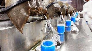 इसकी कुछ बूंदे भी करोडो रूपये की है | The Most Expensive Liquid In The World