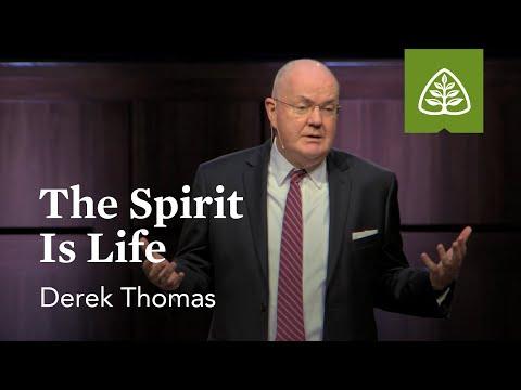Derek Thomas: The Spirit Is Life
