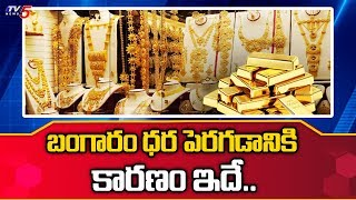 Reasons for Increase in Gold Rate in India | TV5 News