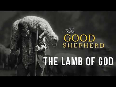 The Lamb of God - Message Only  Matthew Royal