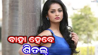 Premare padile sivani - funny video ||  Mr santu entertainment
