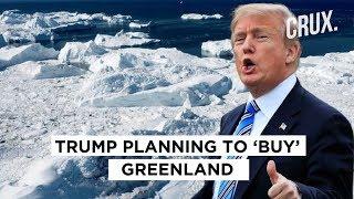 Donald Trump Planning To 'Buy' Greenland, Danish MPs Hit Back