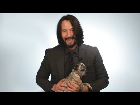 Keanu Reeves Plays With Puppies While Answering Fan Questions - UCPRUgAl_MV9PajsrG_BmT9w