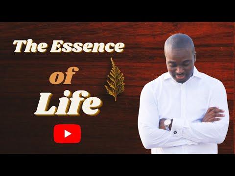 THE SCHOOL OF TYRANNUS  THE ESSENCE OF LIFE DAVID OYEDEPO JNR