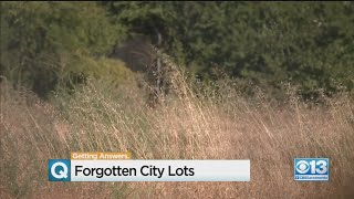 Forgotten City Lots Creating Public Nuisance