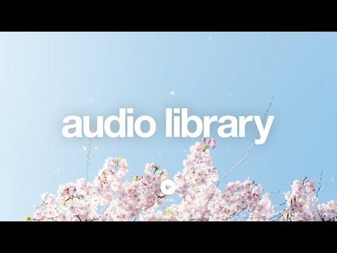 [No Copyright Music] Starry Night - Couple N - UCht8qITGkBvXKsR1Byln-wA