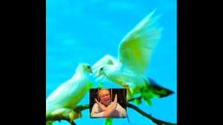 POWER OF LOVE (lyrics)MY VERY HANDSOME HUSBAND,DR.BARRY SORENSON! LOVEUMORE..MABUHAY!