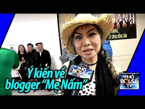 Một số ý kiến về blogger Nguyễn Ngọc Như Quỳnh tại quận Cam