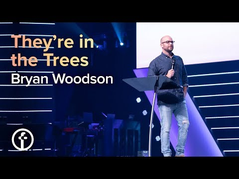 They're in the Trees  Pastor Bryan Woodson