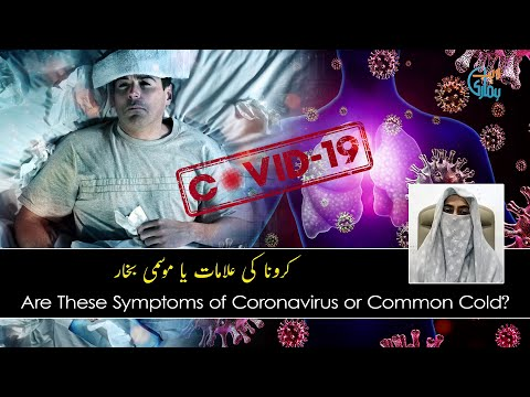 Coronavirus Or Common Cold: How To Do Perfect Diagnosis