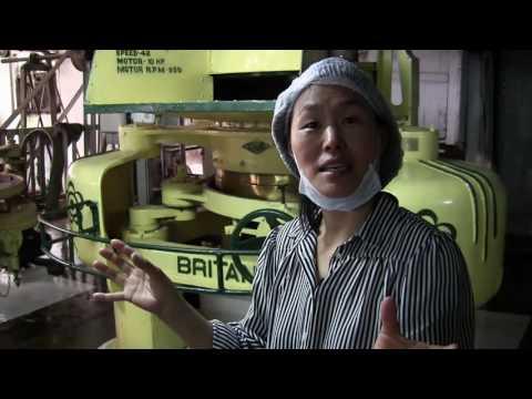 Te - så tillverkas det. Besök på plantage och tefabrik i Indien.