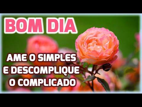 Mensagem de Bom Dia /Ame o Simples, Descomplique o Complicado!