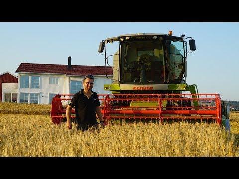 CLAAS AVERO 240 | Svein Tore Sæther
