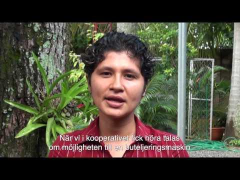 Arbetet för de unga biodlarna i El Salvador fortsätter