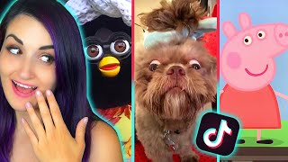TIK TOK Memes That Are Actually FUNNY 7