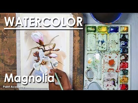 How to Paint Magnolia in Watercolor step by step