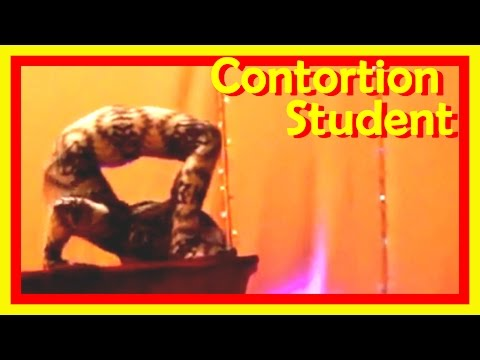 Contortionist In A Fantastic Creature Suit