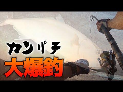 【三宅島】ロックショアカンパチ「フィードポッパーで大爆釣の巻」