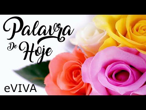 PALAVRA DE HOJE 05 DE JUNHO 2020 eVIVA MENSAGEM MOTIVACIONAL PARA REFLEXÃO PROVÉRBIOS SALMO BOM DIA