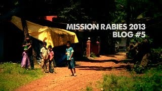 Mission Rabies Blog 5 - The Data