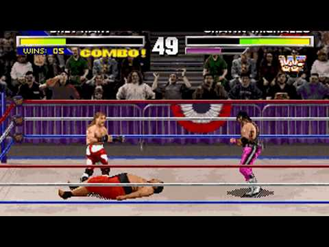 "WWF Wrestlemania: The Arcade Game (Bret ""The Hitman"" Hart) (Sculptured Software) (MS-DOS) [1995]"