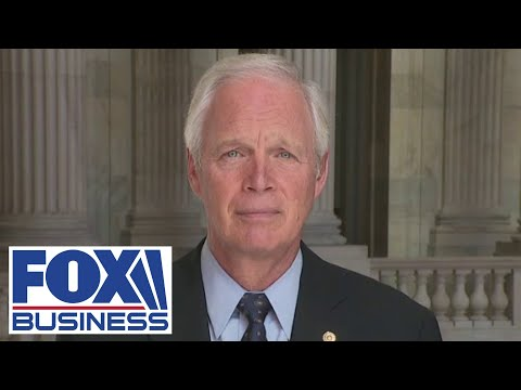 Ron Johnson: Electrical grid security is an 'existential threat'
