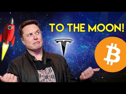 World's Richest Man, Elon Musk, Is Buying ALL The Bitcoin! | Cryptocurrency News