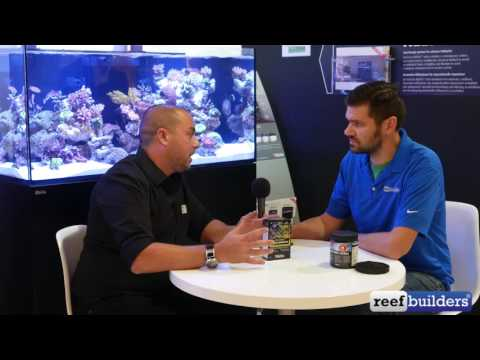 Aquarium Science with Red Sea's Sharon Ram Part 4: Coral Nutrition