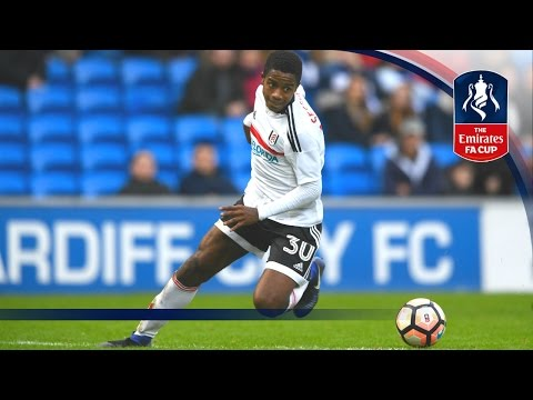 Cardiff City 1-2 Fulham - Emirates FA Cup 2016/17 (R3) | Goals & Highlights