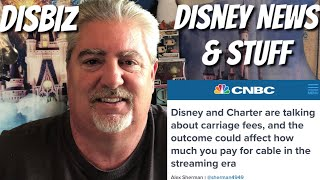 Disney News & Stuff: DisBiz~ Disney & Charter Could Change How We Play For Content!