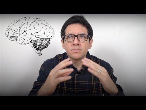 ¿Por qué la Ciencia No puede Explicar la Conciencia? (Aún)