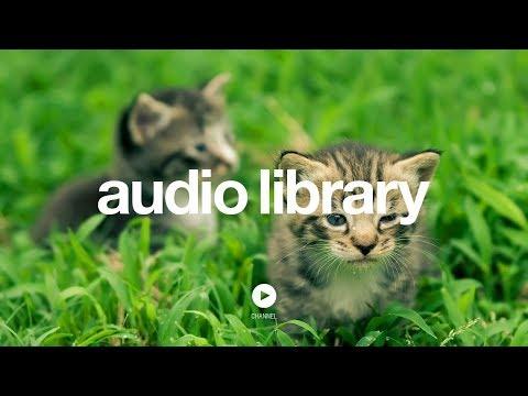 Hidden Agenda - Kevin MacLeod (No Copyright Music) - UCht8qITGkBvXKsR1Byln-wA