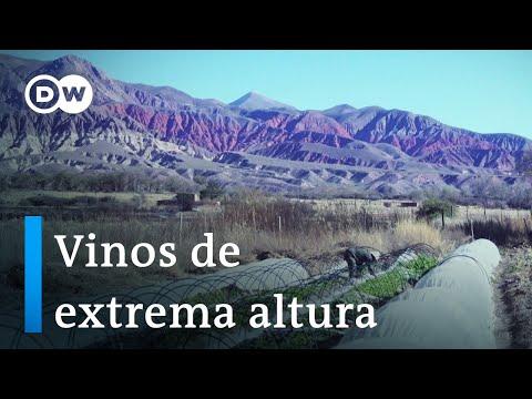 Sabor de la Quebrada de Humahuaca