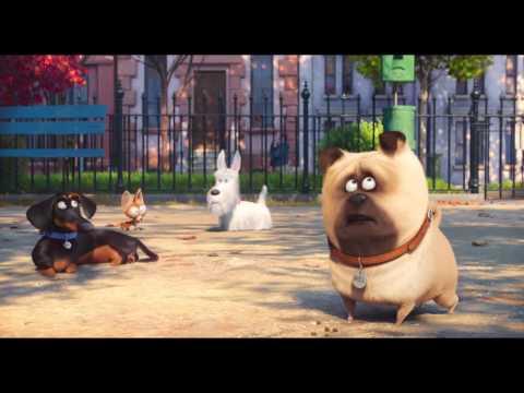 Mascotas - Trailer 2 español (HD)