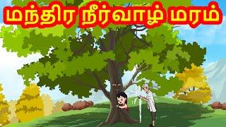 மந்திர நீர்வாழ் மரம் - Magical Water Tree |Tamil Stories -kathai padalgal for kids-Tamil Fairy tales