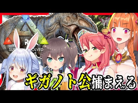 【#ぺこみここ夏】Lv.145 Giganotosaurus Taming!時は満ちた。廃人は集まった。行くぞ。【#とまらないARK】