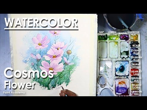 How to Paint Cosmos Flower in Watercolor | step by step
