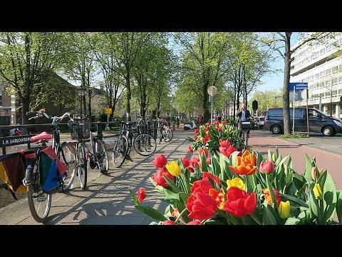 Amsterdam in Spring - April 2019 photo