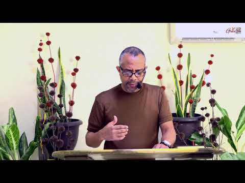 Thursday Bible Study - June 25, 2020