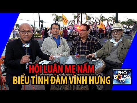 Hội luận Mẹ Nấm, trong âm vang cuộc biểu tình đả đảo ca sĩ Đàm Vĩnh Hưng