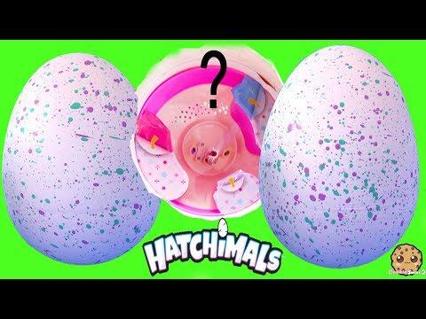 Ponette Pony Hatchimals Hatching Egg Surprise ! Interactive Baby Animals - UCelMeixAOTs2OQAAi9wU8-g