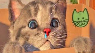 Little Kitten My Favorite Cat Pet Care - Play Lovely Baby Kitten Animation Mini Games For Children