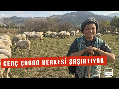 12 Yaşında 90 Koyuna Çobanlık Yapan Şevki