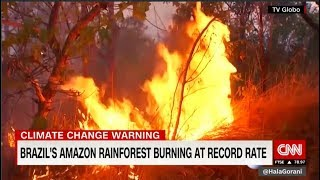 Agus 22, 2019 |  Amazon rainforest is burning at an unprecedented rate